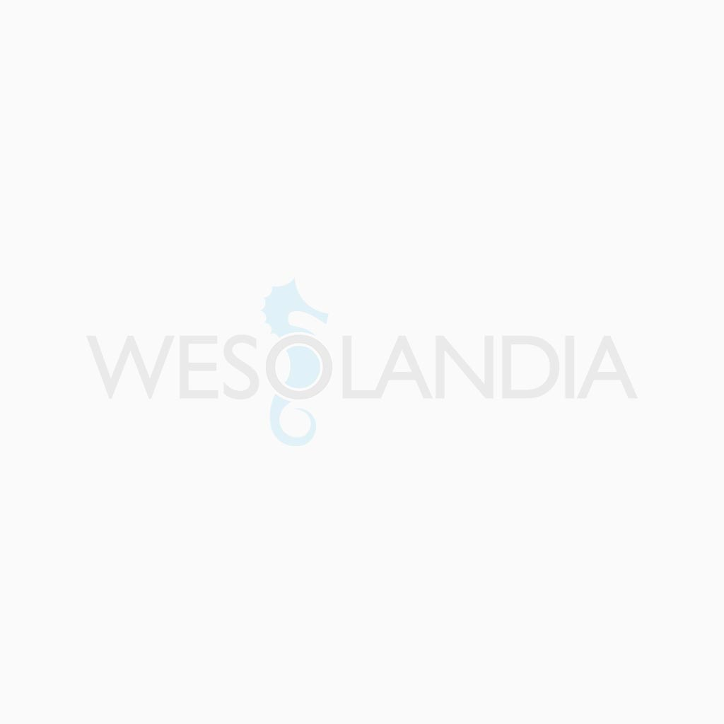 Wesolandia - PILATES
